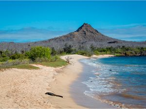 Dragon Hill, SANTA CRUZ ISLAND - The Galapagos Islands