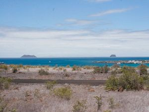 Baltra Island - The Galapagos Islands